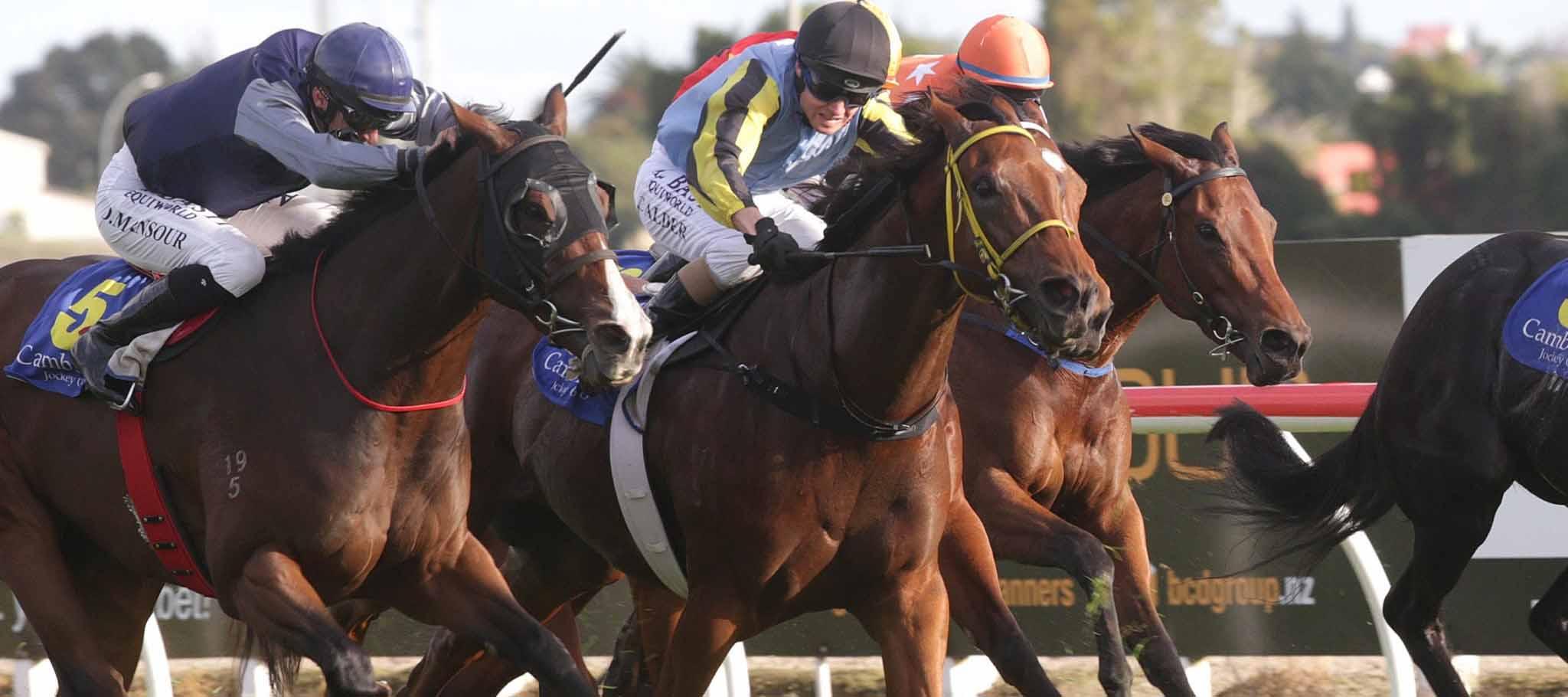Santa Anita Park Horse Racing Odds & Picks for Saturday, June 20