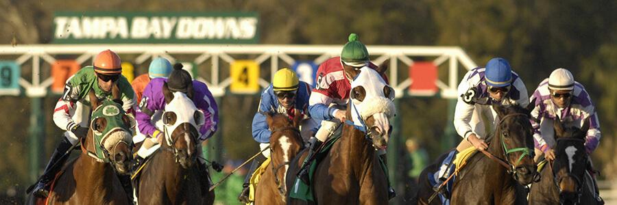 Tampa Bay Downs Horse Racing Odds & Picks for April 1