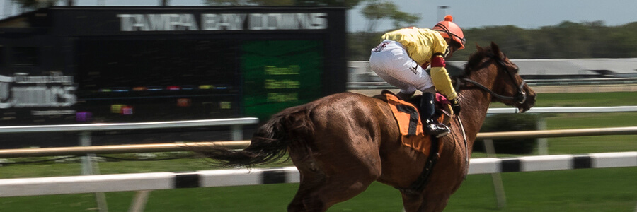 Tampa Bay Downs Horse Racing Odds & Picks for April 8th 2020