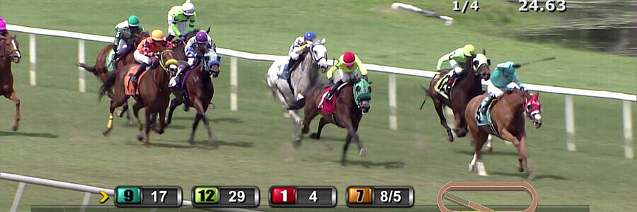 Tampa Bay Downs Horse Racing Odds & Picks for Saturday, May 2