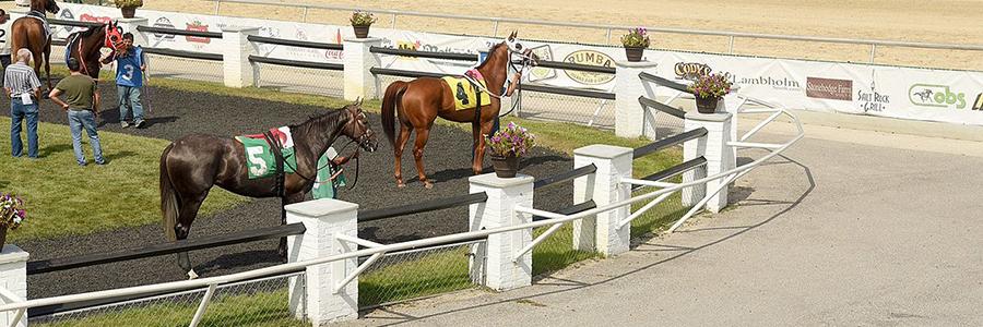 Tampa Bay Downs Horse Racing Odds & Picks for Saturday, May 23