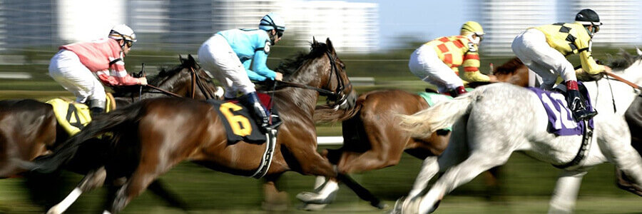Tampa Bay Downs Horse Racing Odds & Picks for Wednesday, May 13