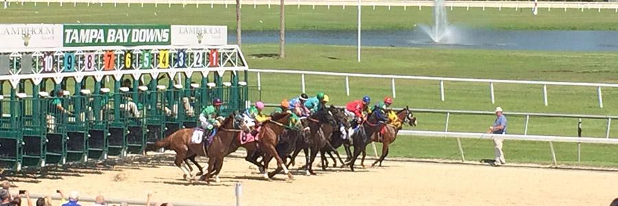 Tampa Bay Downs Horse Racing Picks March 25