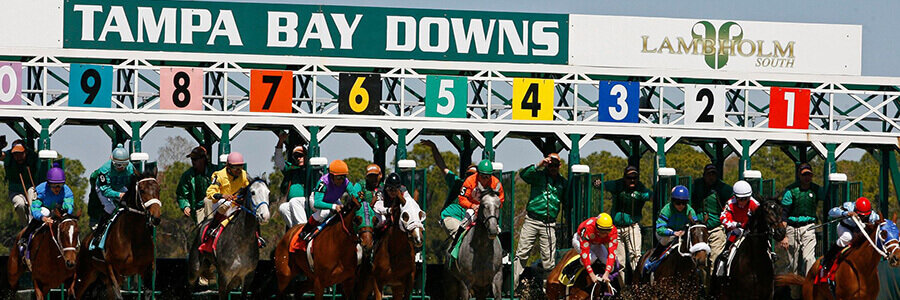 Tampa Bay Downs Horse Racing Picks & Odds for Saturday, May 9
