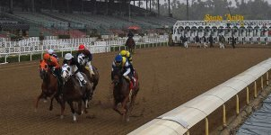 Top 2020 Horse Racing Stakes Races of the Week - Sept. 21st Edition