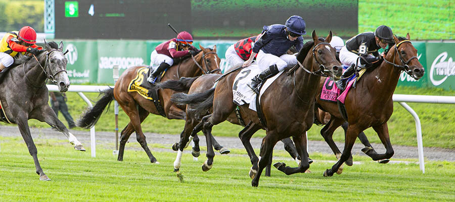 Top 2021 Stakes Races to Bet On From August 6th to August 8th