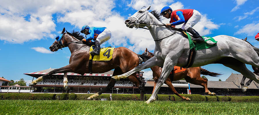 Top 2021 Stakes Races to Bet On From July 16th to July 17th