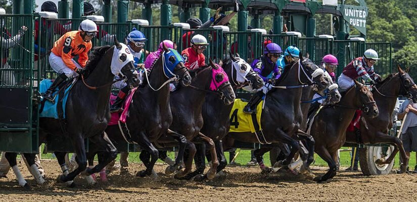 Top 2021 Stakes Races to Bet On From July 23rd to July 25th