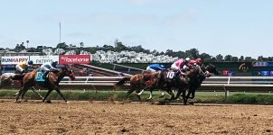 Top 2021 Stakes Races to Bet On From July 31st to August 1st