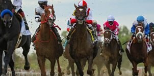Top 2021 Stakes Races to Bet On From July 3rd to July 5th