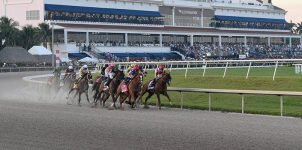 Top 2021 Stakes Races to Bet On From June 12th to June 13th