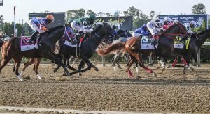 Top 2021 Stakes Races to Wager From Sep. 25th to 26th - Horse Racing Betting