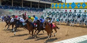 Top 2021 Stakes Races to Wager On Aug. 21st - Horse Racing Betting