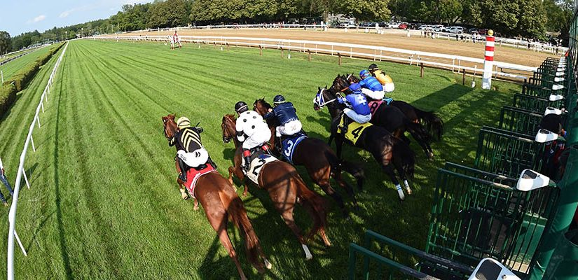 Top 2021 Stakes Races to Wager On Sep. 18th - Horse Racing Betting