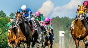 Top 2021 Stakes Races to Wager On Sep. 4th - Horse Racing Betting