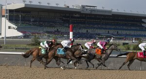 Woodbine Horse Racing Odds & Picks for Saturday, July 4