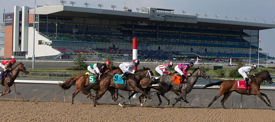 Woodbine Horse Racing Odds & Picks for Saturday, July 4