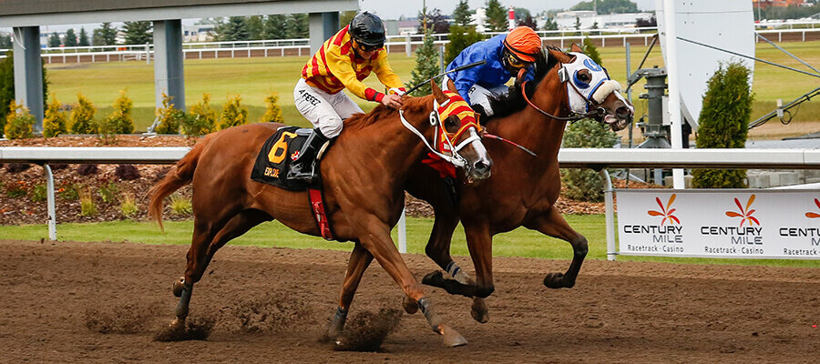 Woodbine Horse Racing Odds & Picks for Saturday, June 27