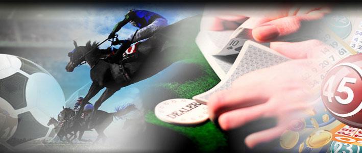 betting-guide-moneyline-wager-2015