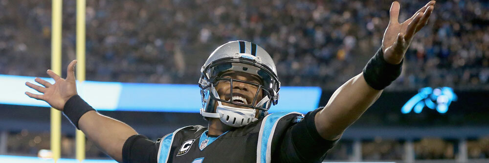 This was the year that Cam Newton finally matured and turned into the sort of QB that wins Super Bowls.