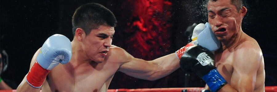 Top Boxing Betting Picks for the Week – December 9th Edition