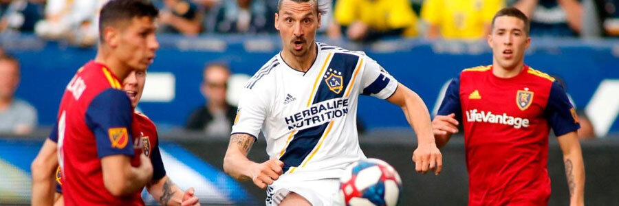 2019 MLS Cup Playoffs Odds & Preview
