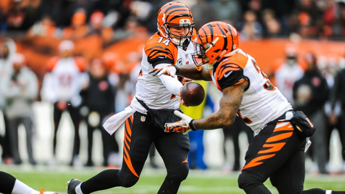 nfl-betting-bengals-2015