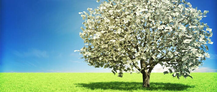 sportsbetting-money-tree-2015