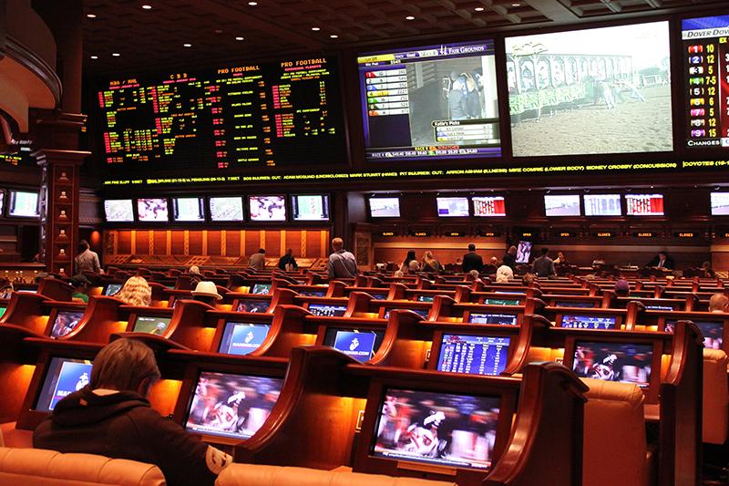 NFL betting sports book 2015