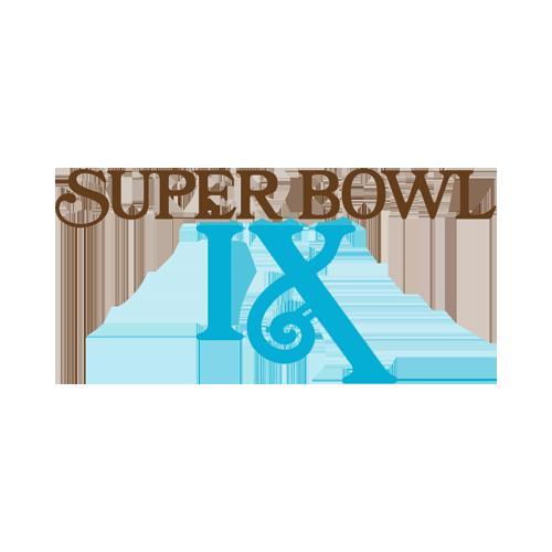 Super Bowl IX Odds