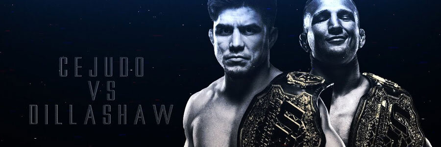 UFC Fight Night 143 Odds, Preview & Pick