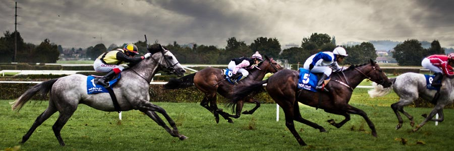 Win, Place and Show Wagering Explained